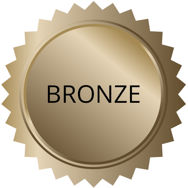 experience-levels-bronze
