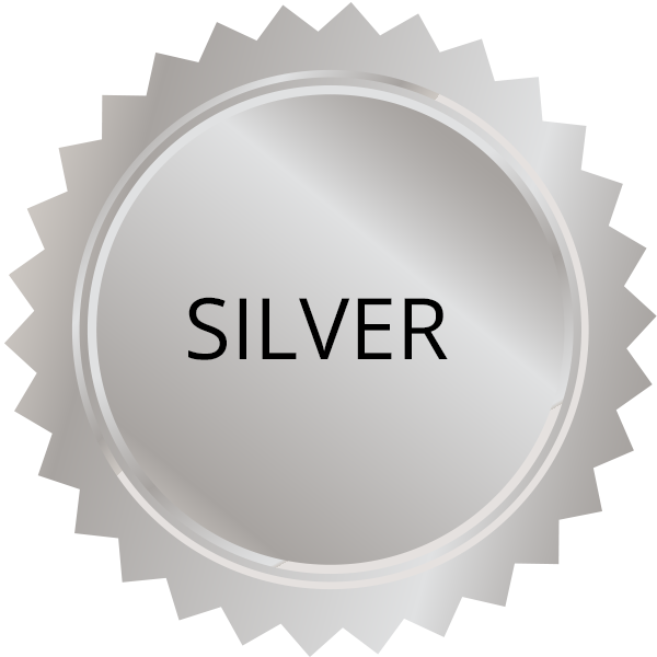experience-levels-silver